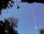 Photo: Bungy Jumping
