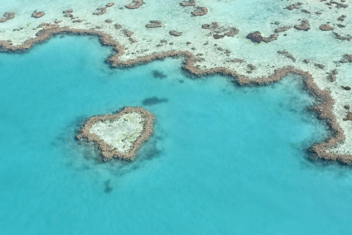 luxury hotels on the great barrier reef