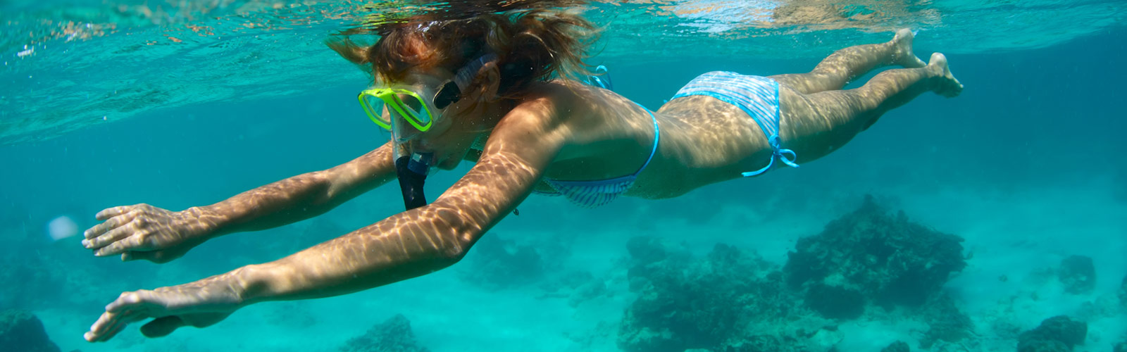 Snorkelling the reef – Great Barrier Reef