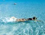 Photo: Great Barrier Reef activities